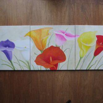 3-luik kleurige Calla's