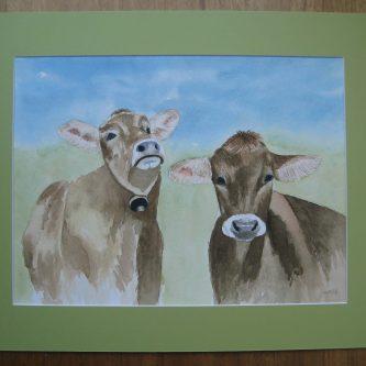 2 Koeien