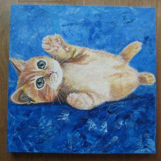 Rode Kitten