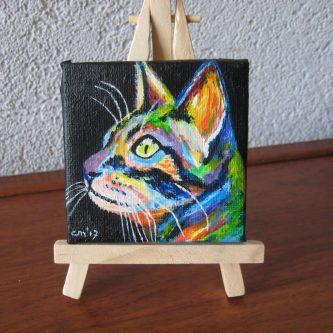 Colourcat