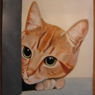 Nieuwsgierige rode kat