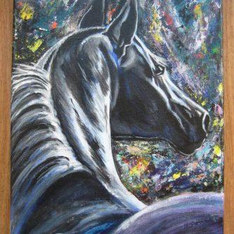 Paard in de nacht