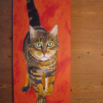 Lange kat