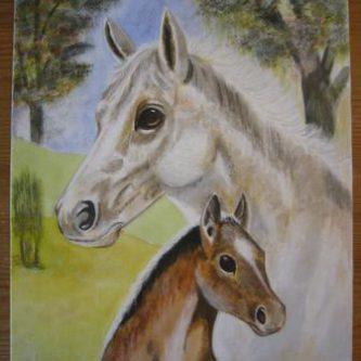 Paard & Veulen