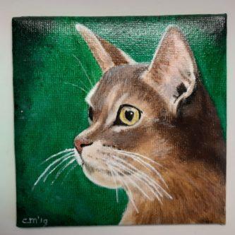 Kat op groen